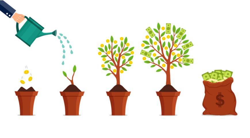 самые прибыльные растения