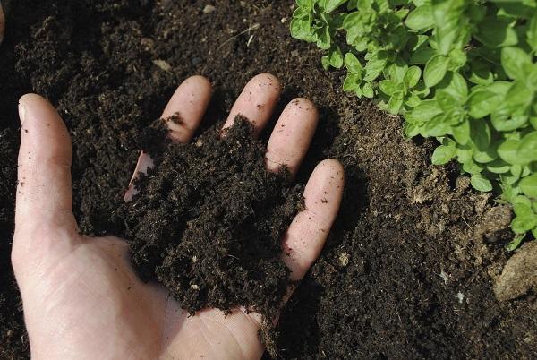 Рыхлая почвенная структура