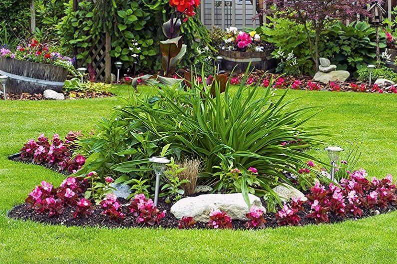 Многолетние цветы для дачи и сада - фото