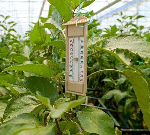 Геотермальное отопление теплицы: делаем своими руками