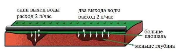 Капельница в шланге для полива может иметь один или два выхода. Выбирают в зависимости от корневой системы растения