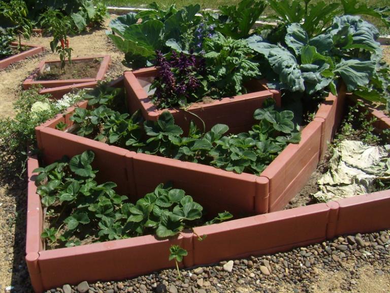 Декоративные садовые грядки