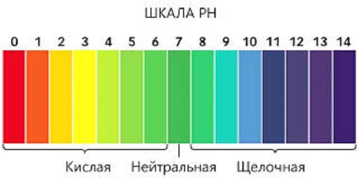Цвет на индикаторной полоске может не совпадать с полиграфическим оттенком. Важно найти максимальное совпадение, это и будет объективный результат.