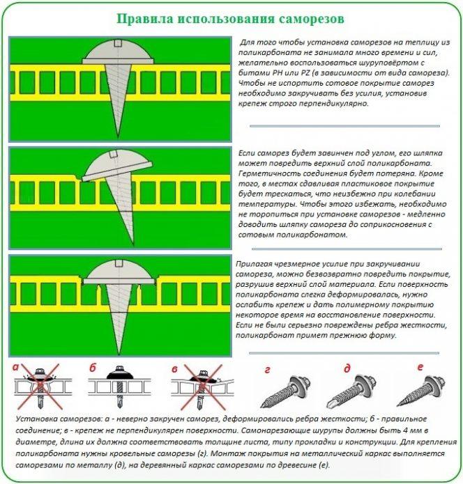 Как покрыть теплицу поликарбонатом