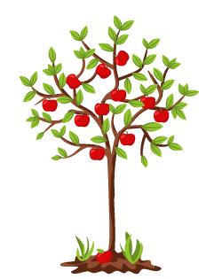 Яблоня Марат Бусурин: особенности сорта и ухода