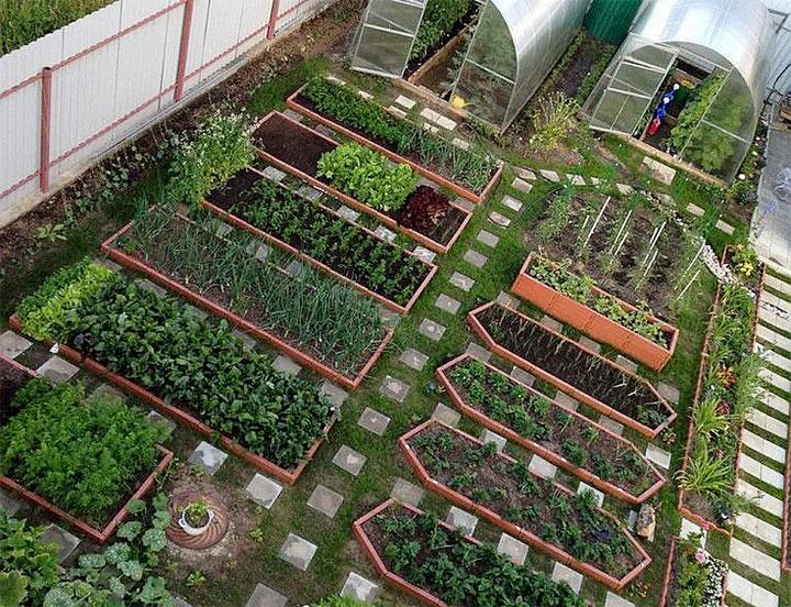Красивое зонирование огорода