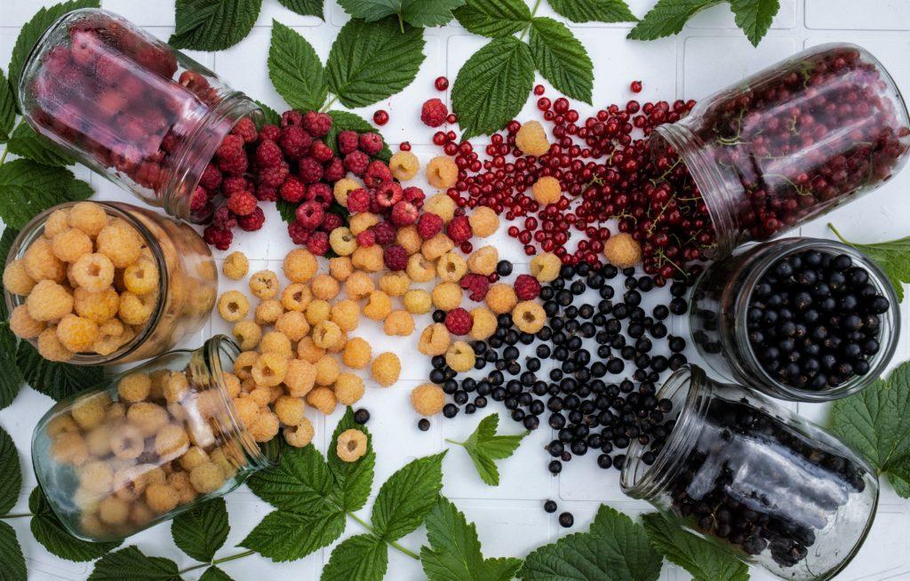Употребление ягод в большом количестве может плохо сказаться на здоровье