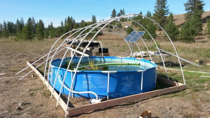 каркасный бассейн в теплице